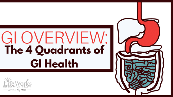 4 quadrants of gi health