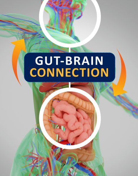 Gut and Brain Connection